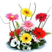 Gümüşhane 14 şubat sevgililer günü çiçek  camda gerbera ve mis kokulu kir çiçekleri