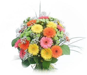 13 adet gerbera çiçegi buketi  Gümüşhane güvenli kaliteli hızlı çiçek