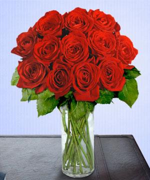 Anneme 12 adet cam içerisinde kirmizi gül  Gümüşhane hediye sevgilime hediye çiçek
