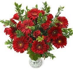5 adet kirmizi gül 5 adet gerbera aranjmani  Gümüşhane 14 şubat sevgililer günü çiçek