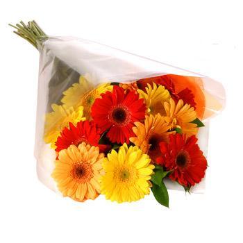 Karisik renklerde gerbera buketi  Gümüşhane online çiçekçi , çiçek siparişi
