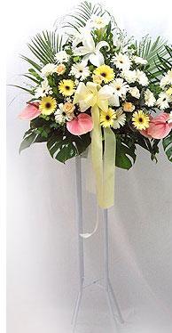 Gümüşhane güvenli kaliteli hızlı çiçek   perförje çiçegi dügün çiçekleri