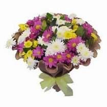 Gümüşhane online çiçek gönderme sipariş  Mevsim kir çiçegi demeti