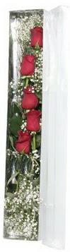 Gümüşhane hediye sevgilime hediye çiçek   5 adet gülden kutu güller