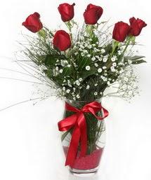 7 adet gülden cam içerisinde güller  Gümüşhane İnternetten çiçek siparişi