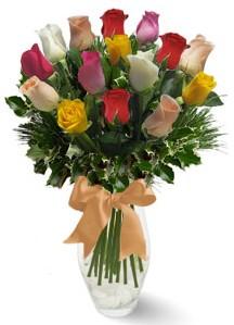 15 adet vazoda renkli gül  Gümüşhane çiçek online çiçek siparişi