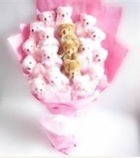 17 adet pelus ayicik buketi  Gümüşhane internetten çiçek satışı