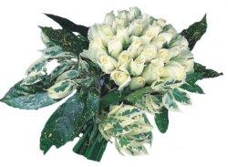 Gümüşhane çiçek mağazası , çiçekçi adresleri  9 Beyaz gül Özel kisiler için