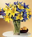 Gümüşhane çiçek gönderme sitemiz güvenlidir  Lilyum ve mevsim  çiçegi özel