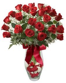 17 adet essiz kalitede kirmizi gül  Gümüşhane çiçek satışı