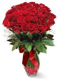 19 adet essiz kalitede kirmizi gül  Gümüşhane İnternetten çiçek siparişi