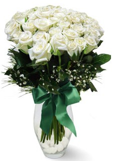 19 adet essiz kalitede beyaz gül  Gümüşhane çiçek servisi , çiçekçi adresleri