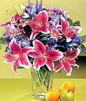 Gümüşhane çiçek satışı  Sevgi bahçesi Özel  bir tercih