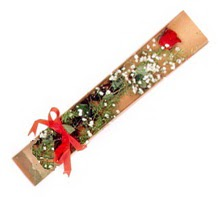 1 adet kirmizi gül  Gümüşhane online çiçek gönderme sipariş