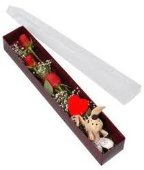 kutu içerisinde 3 adet gül ve oyuncak  Gümüşhane online çiçekçi , çiçek siparişi