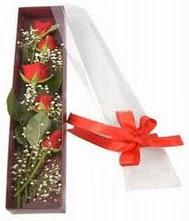 kutu içinde 5 adet kirmizi gül  Gümüşhane çiçek mağazası , çiçekçi adresleri