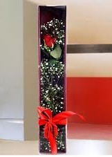 kutu içinde tek kirmizi gül  Gümüşhane çiçek gönderme