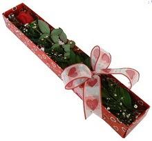 Tek kirmizi gül kutu içerisinde  Gümüşhane ucuz çiçek gönder