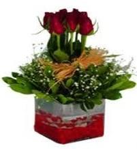 Gümüşhane çiçek siparişi vermek  7 adet mika yada cam vazoda gül tanzimi