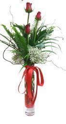 Gümüşhane hediye sevgilime hediye çiçek  3 adet kirmizi gül vazo içerisinde