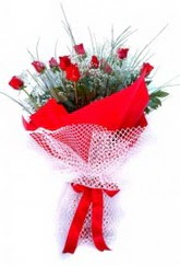 Gümüşhane internetten çiçek satışı  9 adet kirmizi gül buketi demeti