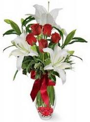 Gümüşhane kaliteli taze ve ucuz çiçekler  5 adet kirmizi gül ve 3 kandil kazablanka