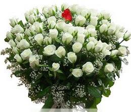 Gümüşhane çiçek online çiçek siparişi  100 adet beyaz 1 adet kirmizi gül buketi