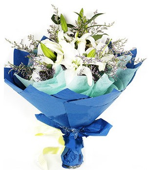 Gümüşhane çiçek gönderme sitemiz güvenlidir  4 adet dal kazablankadan görsel buket