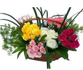 Gümüşhane uluslararası çiçek gönderme  35 adet rengarenk güllerden sepet tanzimi