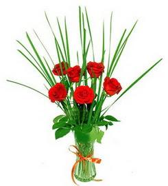 Gümüşhane cicekciler , cicek siparisi  6 adet kırmızı güllerden vazo çiçeği