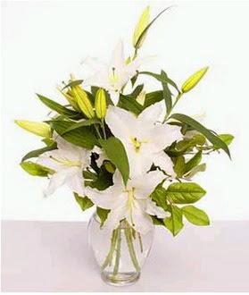 Gümüşhane çiçek siparişi vermek  2 dal cazablanca vazo çiçeği