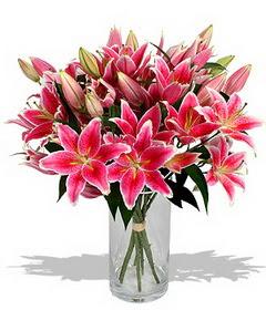 4 dal cazablanca görsel vazosu  Gümüşhane anneler günü çiçek yolla
