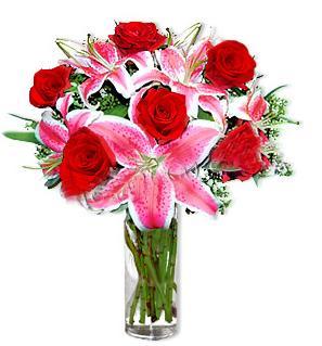 Gümüşhane internetten çiçek siparişi  1 dal cazablanca ve 6 kırmızı gül çiçeği