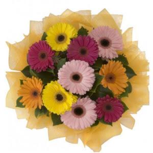 Gümüşhane internetten çiçek satışı  11 adet karışık gerbera çiçeği buketi