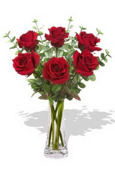 Gümüşhane anneler günü çiçek yolla  6 kırmızı gül vazosu