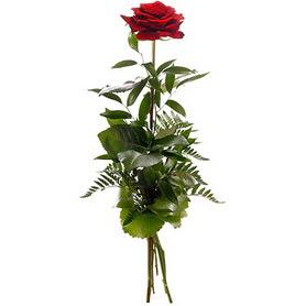 Gümüşhane çiçekçi mağazası  1 adet kırmızı gülden buket