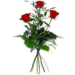 Gümüşhane çiçek yolla , çiçek gönder , çiçekçi   3 adet kırmızı gülden buket