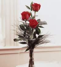 Gümüşhane çiçek online çiçek siparişi  Vazoda 3 adet güzel gül