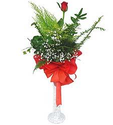 Gümüşhane çiçek gönderme sitemiz güvenlidir  Cam vazoda masum tek gül