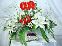 Gümüşhane çiçek satışı  Anthurim Kazablanka  gül