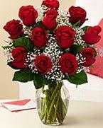 Sevgilime hediye 9 adet 1.ci kalite gül  Gümüşhane çiçek gönderme sitemiz güvenlidir