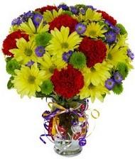 En güzel hediye karışık mevsim çiçeği  Gümüşhane 14 şubat sevgililer günü çiçek