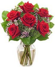 Kız arkadaşıma hediye 6 kırmızı gül  Gümüşhane çiçek mağazası , çiçekçi adresleri
