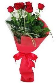 Çiçek yolla sitesinden 7 adet kırmızı gül  Gümüşhane çiçek online çiçek siparişi