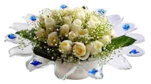 Gümüşhane çiçek gönderme  11 adet Beyaz güller özel cam tanzim