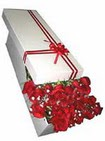 Gümüşhane online çiçek gönderme sipariş  11 adet 1.kalite magnum güller