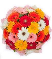 15 adet renkli gerbera buketi  Gümüşhane hediye çiçek yolla