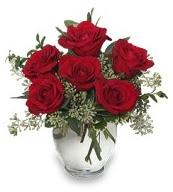 Vazo içerisinde 5 adet kırmızı gül  Gümüşhane anneler günü çiçek yolla