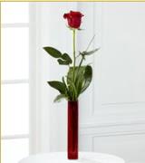 Vazo içerisinde 1 adet kırmızı gül  Gümüşhane çiçek mağazası , çiçekçi adresleri