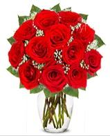 12 adet vazoda kıpkırmızı gül  Gümüşhane yurtiçi ve yurtdışı çiçek siparişi